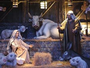 christmas-manger_300
